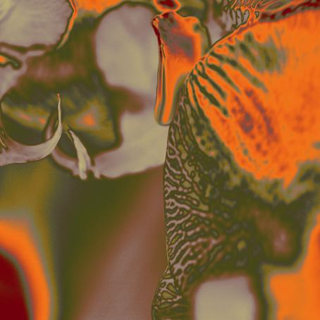 Maria Tehia, abstract artist