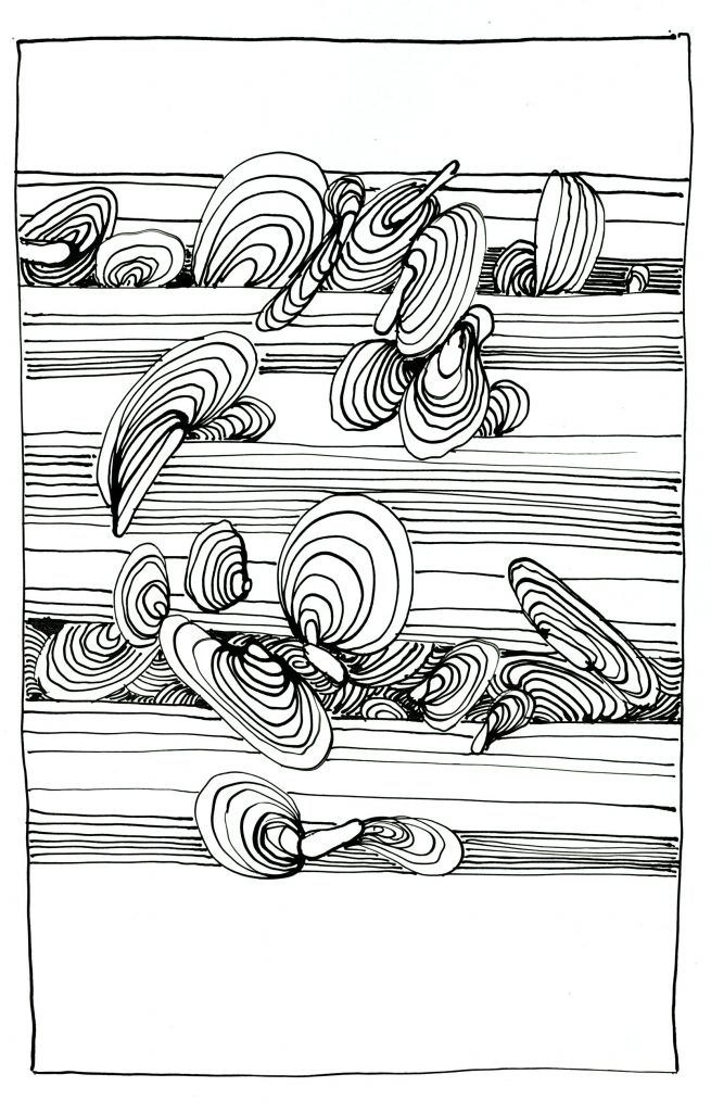 an Astner - PELOPSY - abstract drawings